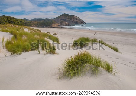 Sand Dunes and Grass Vegetation at Beautiful Wharariki Beach - stock photo