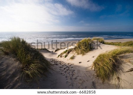 sand dunes and ocean in the netherlands - stock photo