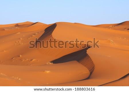 Sand dunes at sunrise, Sahara, Morocco  - stock photo