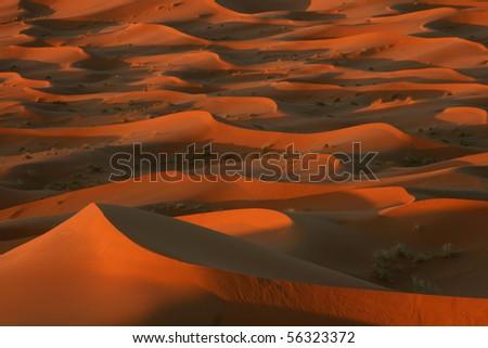 Sand dunes in desert Sahara in Morocco - stock photo