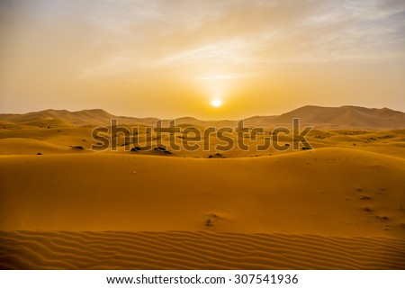 Sand dunes in Merzouga, Morocco, at sunset - stock photo