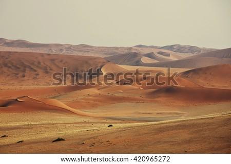 Sand dunes in Namib desert - stock photo