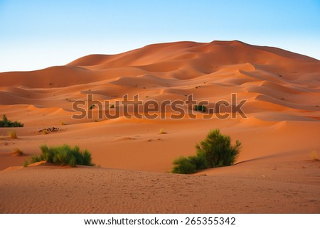 Sand Dunes in the Erg Chebbi Desert, Western Sahara, Morocco - stock photo