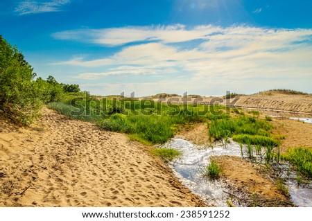Sand dunes near Baltic sea in Saulkrasti, Latvia - stock photo