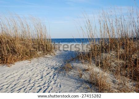 Sand dunes near ocean - stock photo
