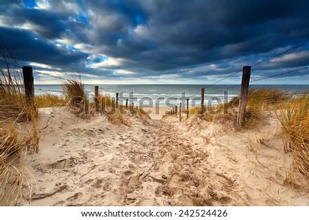 Sand path to North sea beach, Zandvoort, Netherlands - stock photo
