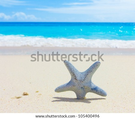 Sand Surf Beach - stock photo
