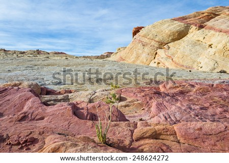 sandstone desert landscape in Valley of Fire State Park in Nevada - stock photo