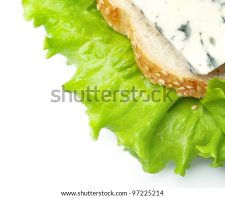 sandwich from bread and blue cheese on leaves of green salad - stock photo