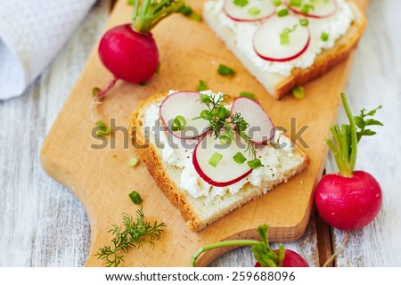 Sandwich  with cottage cheese and  radish,top view