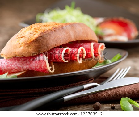Sandwich with Salami - stock photo