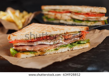 Sandwich with salmon and golden French fries potatoes on background