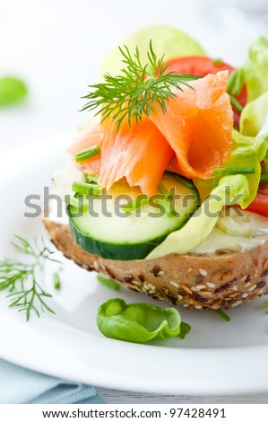 Sandwich with Vegetables and Smoked Salmon - stock photo