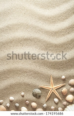 Sandy background with shells and starfish. Summer concept. Top view - stock photo