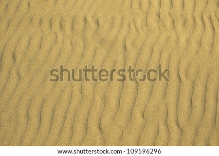 Sandy Beach Background - Sand Pattern Photo. Background Photo Collection.