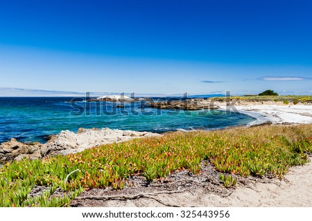 Sandy beach near Cypress Point, 17 Mile Drive, Big Sur, California, USA - July 1, 2012: The 17 Mile Drive is a scenic road through Pacific Grove and Pebble Beach in Big Sur, Monterey, California, USA. - stock photo