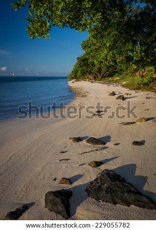 Sandy beach of Florida Keys - stock photo
