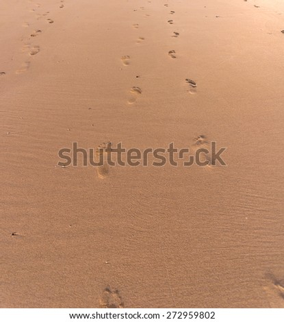 sandy beach with lots of footprints - stock photo