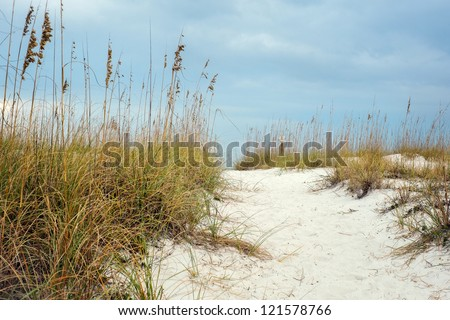 Sandy Path leads through the hilly dunes to beautiful beach in Florida. Surrounding the path are local plants �¢?? sea oats that help to stabilize and grown beach sand dunes. - stock photo