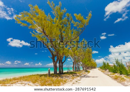 Sandy pathway separated by trees from a beautiful beach in Bahamas - stock photo