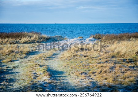 sandy road to the sea in Sweden - stock photo