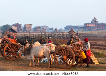 SANGHAR, MYANMAR - JANUARY 17: An unidentified Intha tribe men with harness of draughts during the local Htamanu Festival on January 15, 2011 in Sanghar Village, Shan state, Myanmar - stock photo