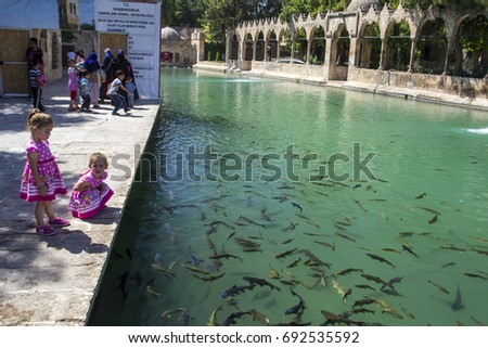 SANLIURFA, TURKEY - JULY 31: Unidentified visitors to the Holy Lake with sacred fish in Golbasi Park and Halil Rahman Mosque. July 31, 2017 in Sanliurfa, Turkey.