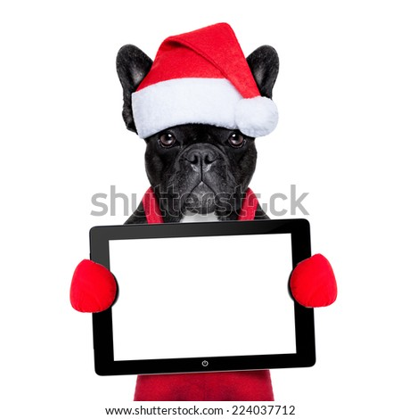 Santa claus christmas dog wearing a hat holding a touchpad or tablet pc , isolated on white background - stock photo