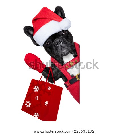 Santa claus christmas dog with shopping bag besides a white blank banner , isolated on white background - stock photo