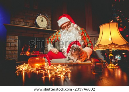 Santa Claus sitting with his cat at home near Christmas tree and  resting by his fireplace - stock photo