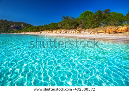 Santa Giulia beach with red rocks, pine trees and azure clear water, Corsica, France.