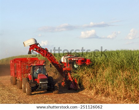 SAO PAULO, BRAZIL, APRIL 18, 2007. Sugar cane harvesting in Brazil - stock photo