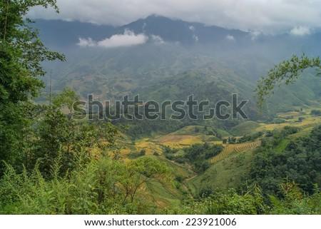 Sapa, Vietnam. Rice fields on the slope of the mountain panorama. - stock photo