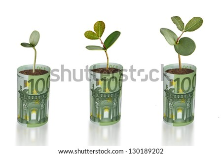 Saplings growing from euro banknotes - stock photo