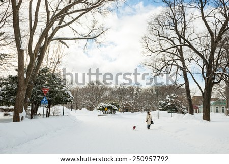 SAPPORO, HOKKAIDO, JAPAN - JANUARY 11, 2015: Winter scene of Hokkaido University Sapporo Campus. Hokkaido University is one of the national universities of Japan.