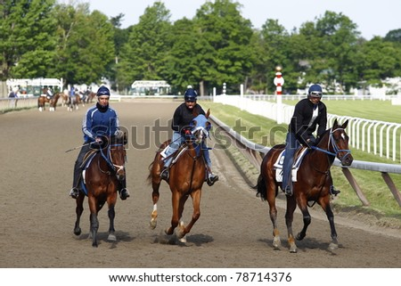 SARATOGA SPRINGS, NEW YORK - JUNE 5: Three H.James Bond trained horses gallop on the Oklahoma Training Track on June 5, 2011 in Saratoga Springs, NY