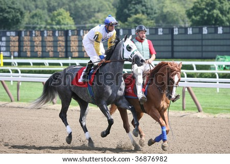 """SARATOGA SPRINGS, NY- AUG 28: """"Diamond Song"""" with Jamie Theriot aboard in the Post Parade for the 3rd race at Saratoga Race Track, August 28, 2009 in Saratoga Springs, NY. - stock photo"""