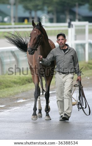 SARATOGA SPRINGS, NY- AUGUST 30: An unidentified horse returns to the stable after a race at Saratoga Race Track, August 30, 2009 in Saratoga Springs, NY. - stock photo