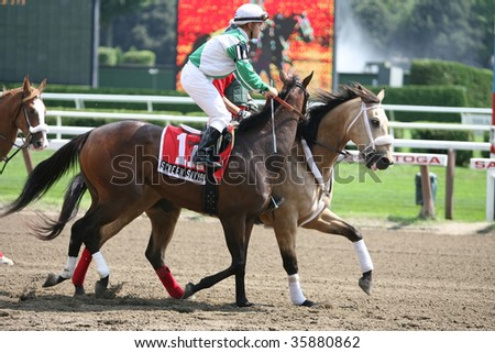 "SARATOGA SPRINGS, NY- AUGUST 24: Javier Castellano aboard ""Screen Saviour"" in the post parade for the Lucy Scribner Stakes at Saratoga Race Track, August 24, 2009 in Saratoga Springs, NY."