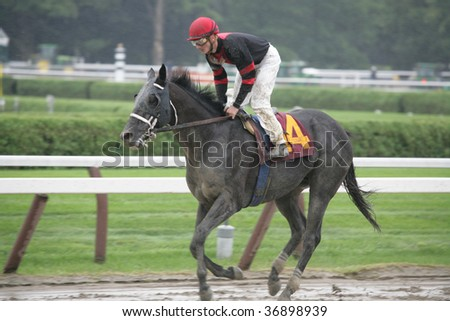 """SARATOGA SPRINGS, NY- AUGUST 29: """"Mr. Unstoppable"""" with Jamie Theriot aboard returns to be unsaddled after the 6th race at Saratoga Race Track, August 29, 2009 in Saratoga Springs, NY. - stock photo"""