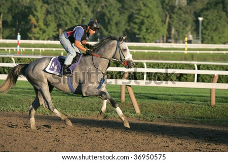 SARATOGA SPRINGS, NY- SEPT 7: A rider works a horse for trainer A. Jerkins on the last day of workouts for the season on the track at Saratoga Race Track, September 7, 2009 in Saratoga Springs, NY.