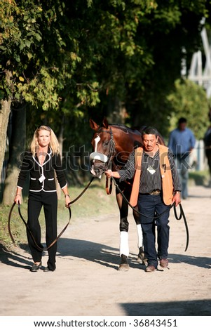 "SARATOGA SPRINGS, NY- SEPT 5: ""Past the Point"" is walked to the Paddock for the Grade I Woodward Stakes at Saratoga Race Track, September 5, 2009 in Saratoga Springs, NY. - stock photo"