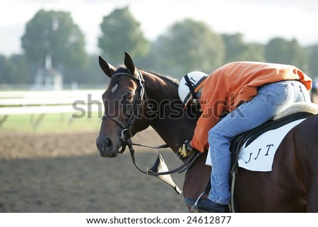 SARATOGA SPRINGS - September 4: A A Single Rider Pats his Horse during the Morning Workouts at the Saratoga Main Track on September 4, 2005 in Saratoga Springs, NY - stock photo
