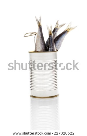 Sardines in open can isolated on white background. Culinary seafood eating.  - stock photo