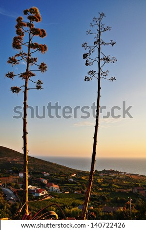 sardinian landscape - stock photo