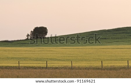 Saskatchewan country scene - stock photo