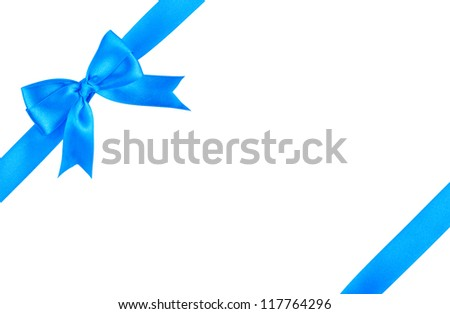 Satin gift bow - stock photo
