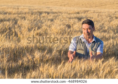 Satisfied mature farmer touching with care his ripe wheat field before the harvest, vertical copy space