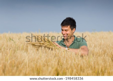 Satisfied young farmer touching with care his ripe wheat ear in field