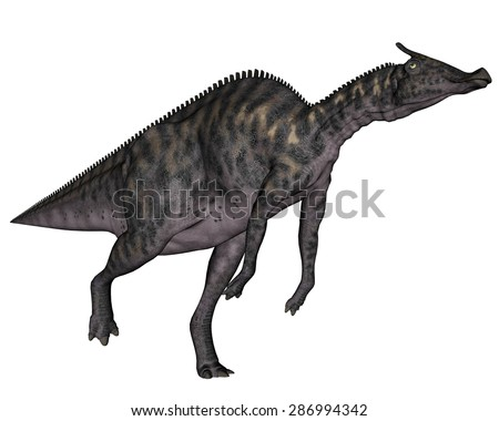 Saurolophus dinosaur running isolated in white background - 3D render